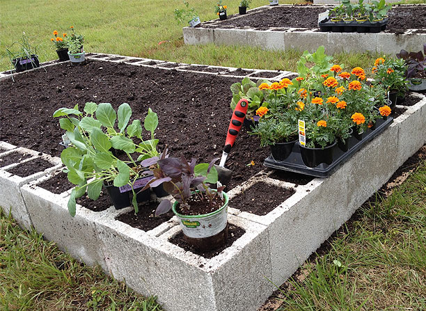 Cinder block flower bed..very different but I like it ... |Cinder Block Flower Bed Plans
